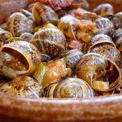 Caracoles Gourmet